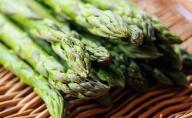 旬の採れたて【春採り】グリーンアスパラ1.5kg(Lサイズ以上)北海道佐呂間産【2021年4月出荷開始】