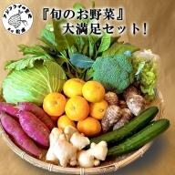 【A5-008】道の駅松浦海のふるさと館『旬のお野菜』の大満足セット!