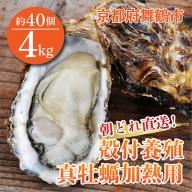 【ふるさと納税】【朝どれ直送】殻付養殖真牡蠣 4kg 加熱用