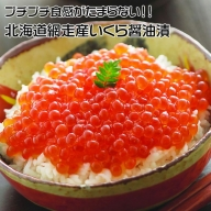 【定期便】全3回(毎月)北海道 網走産 冷凍いくら醤油漬 500g