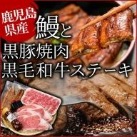 e0-022 鹿児島自慢3点セット(うなぎ・黒毛和牛サーロインステーキ・黒豚肩ロース)合計約1.1kg
