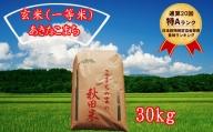 【特A一等米】 秋田県仙北市産米 令和2年産 あきたこまち 玄米 30kg <藤村本店>