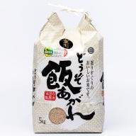 M−029.【定期便6回】特別栽培米5kg(玄米)
