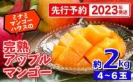 【2021年発送】ミナミマンゴーハウスの完熟マンゴー約2kg