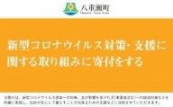 新型コロナウイルス対策・支援に関する取り組みに寄付をする(3万円)