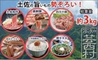 南国土佐からのバラエティセット 牛肉 豚肉 鶏肉 ソーセージ 鰹のタタキ お米<高知市共通返礼品>