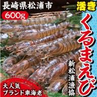 【B2-035】新松浦漁協 活きくるまえび600g※配達不可地域あり(離島・沖縄・北海道)