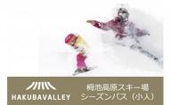 HAKUBA VALLEY 栂池高原スキー場シーズンパス(小人)1枚