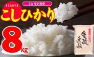 【定期便2ヶ月】令和2年 広島県安芸高田市産 こしひかり 8kg