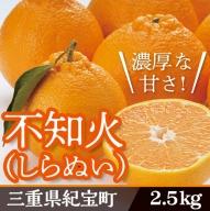 B-02 不知火(しらぬい) 9~12玉