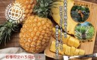 2021年発送【手でちぎって食べる楽しさ】沖縄 西表島産 スナックパイン 3玉セット