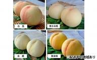 赤磐市産 桃 食べ比べ 約8.0kg(約2.0kg×4種)