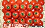 【定期便3ヶ月】フルーツトマト「星のしずく」の宝石箱