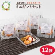 枕崎産 ドライフルーツ ミニ・ギフトセット 12袋 感謝 御礼 お礼 贈り物 MM-68