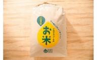【2年産】中粒でふっくらツヤツヤの美白米「きぬむすめ」玄米【30kg×1袋】【C026SM1】