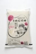 【2年産】中粒でふっくらツヤツヤの美白米「きぬむすめ」白米【5kg】【C020SM1】