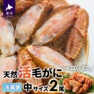 【旬の今だけ!】漁協の活毛がに(冷蔵発送) 中サイズ2尾セット[B02-175]