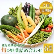 定期便 半年で計3回 鹿児島県枕崎産旬の野菜の詰め合わせ 野菜セット 国産 九州 厳選
