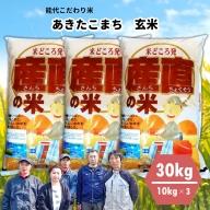 【令和2年産米】能代こだわり米 あきたこまち玄米 30kg