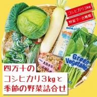 20-786.【数量限定】四万十のコシヒカリ3kgと季節の野菜詰合せ
