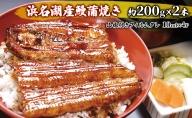 浜名湖鰻蒲焼スーパージャンボ 2本(特大 約200g×2本)