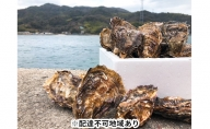 丸十水産 広島ブランド 牡蠣 【かき小町】殻付30個
