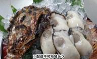 丸十水産 広島ブランド 牡蠣 【かき小町】むき身700gと殻付き8個セット