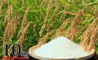 富谷市産 郷の有機使用特別栽培米 ササニシキ 10kg