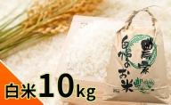【白米】富山県魚津産コシヒカリ(こだわり栽培)10kg