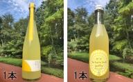 ニューサマーオレンジのお酒セット(1)