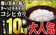 TB0-49 モチモチ食感っ!!令和2年度産【コシヒカリ】10kg