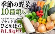 TB0-51 季節の野菜とペットボトルに入ったお米のセット