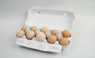 TA8-7 【毎月限定30セット】 純粋烏骨鶏・平飼い有精卵(10個セット)