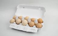 TC3-11 純粋烏骨鶏・平飼い有精卵(10個セット)【3回定期便】