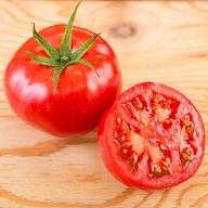 A−156.トマトらしさがドキュウ!大玉トマト