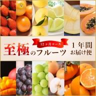 宮崎自慢のフルーツをお届け!至極の果物定期便【G12-01】