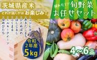 【数量限定】<令和2年産米>茨城県産米と旬野菜のセット