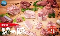 群馬県東吾妻町産 新ブランド『超力豚』豚肉半頭 約26kg