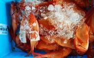 朝とれたて金目鯛 2キロ