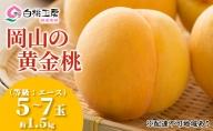 桃茂実苑 岡山黄金 桃 (等級:エース)約1.5kg 5~7玉入り