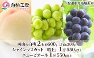 桃茂実苑 岡山 白桃 (2玉)+ マスカット (1房)+ ピオーネ (1房)