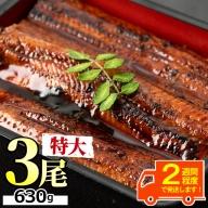 【21775】東串良町のうなぎ蒲焼ビッグサイズ(200g以上×3尾・タレ、山椒付)【アクアおおすみ】