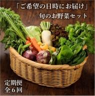 53-22_「お好きな時にいつでもお届け」本日の朝どれお野菜セット【全6回】