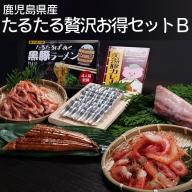 C3-4502/【鹿児島産】たるたる贅沢お得セットB