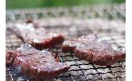 鷹山ファミリー牧場で大切に育てたプレミアム牛肉500gパック