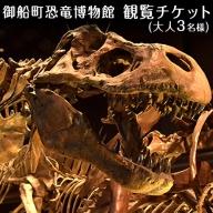 熊本県御船町 御船町恐竜博物館観覧チケット(大人3名様) 《30日以内に順次出荷(土日祝除く)》 御船町恐竜博物館