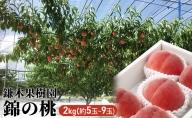 【2021年発送】錦の 桃 2kg(約5玉~9玉) 【配送不可:離島】