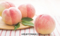 【2021年発送】錦の水蜜 桃 4kg(約12玉~15玉)【配送不可:離島】