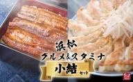 (SF27)浜松グルメ&スタミナセット「小結」浜名湖うなぎ大蒲焼8尾+浜松餃子60粒