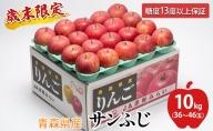 歳末限定!糖度保証 特Aサンふじ約10kg 糖度13度以上! 津軽平川市産
